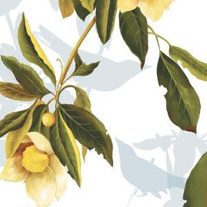 Lemon Floral by Andrew Michaels