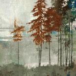 Aspen-Andrew Michaels-Mounted Art Print