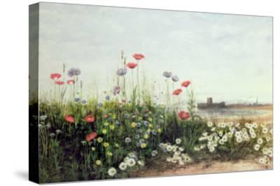 Bank of Summer Flowers