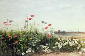 Bank of Summer Flowers by Andrew Nicholl