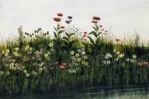 Poppies, Daisies and Thistles on a River Bank by Andrew Nicholl