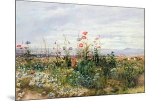 Wildflowers with a View of Dublin Dunleary by Andrew Nicholl
