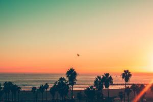 Venice Beach Sunset - LA by Andrew Shiels