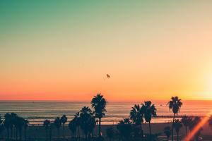 Venice Beach Sunset - LA by Andrew Shiels