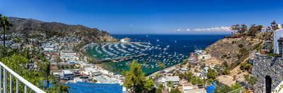 A Panorama of Avalon on Catalina Island by Andrew Shoemaker