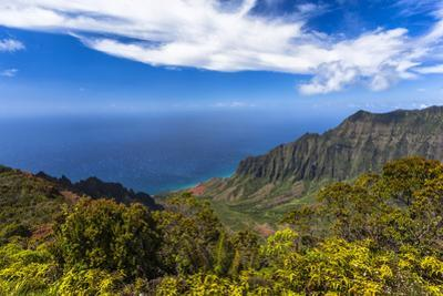 Kalalau Valley Overlook in Kauai by Andrew Shoemaker
