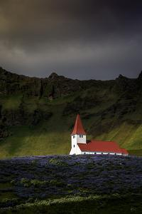 Vik Church and Lupine Flowers, South Region, Iceland, Polar Regions by Andrew Sproule