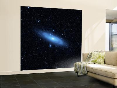 Andromeda Galaxy's Older Stellar Population in Blue--Wall Mural – Large
