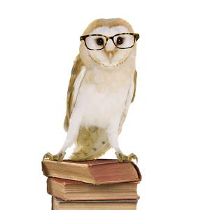 Barn Owl with Books Wearing Glasses by Andy and Clare Teare