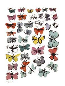 Butterflies, 1955 by Andy Warhol