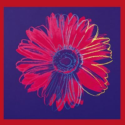 Daisy, c.1982 (Blue and Red)