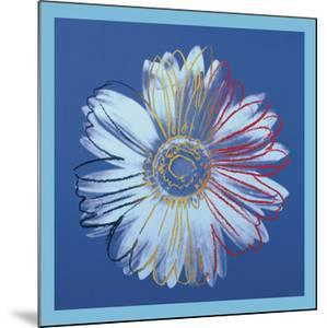Daisy, c.1982 (Blue on Blue) by Andy Warhol