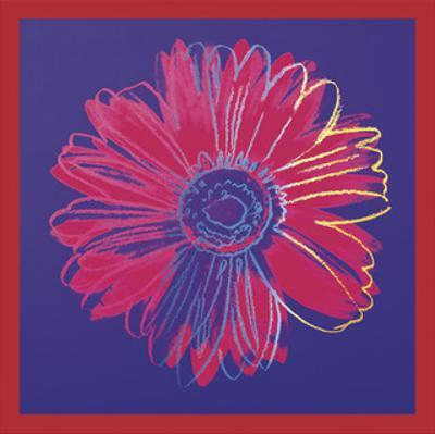 Daisy, c.1982 (blue & red)