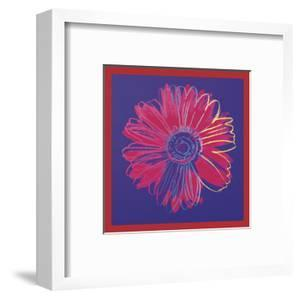 Daisy, c.1982 (blue & red) by Andy Warhol