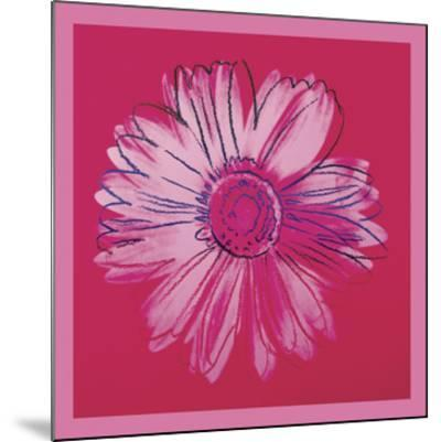 Daisy, c. 1982 (crimson and pink) by Andy Warhol