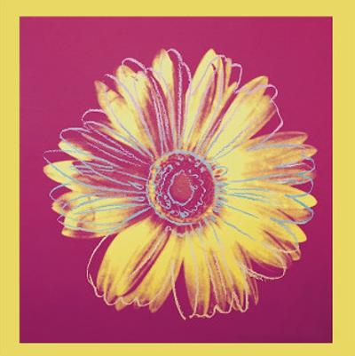 Daisy, c.1982 (Fuchsia and Yellow)