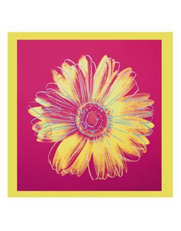 Daisy, c.1982 (Fuchsia and Yellow) by Andy Warhol