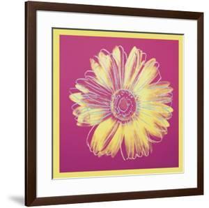 Daisy, c.1982 (fuchsia & yellow) by Andy Warhol