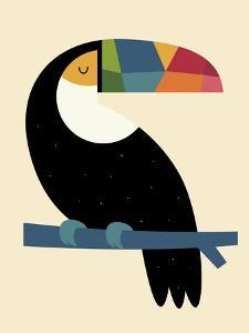 Rainbow Toucan by Andy Westface