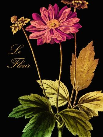 https://imgc.artprintimages.com/img/print/anemone-japonica_u-l-pynhyp0.jpg?p=0