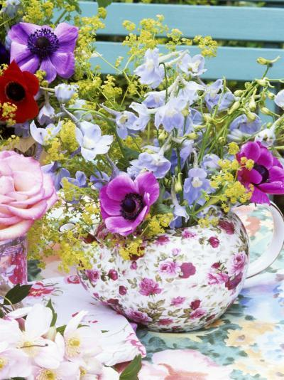 Anemones and Delphiniums in a Teapot-Linda Burgess-Photographic Print