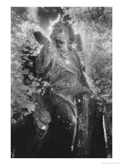 Angel on Tomb, Ardoginna House, County Waterford, Ireland-Simon Marsden-Giclee Print