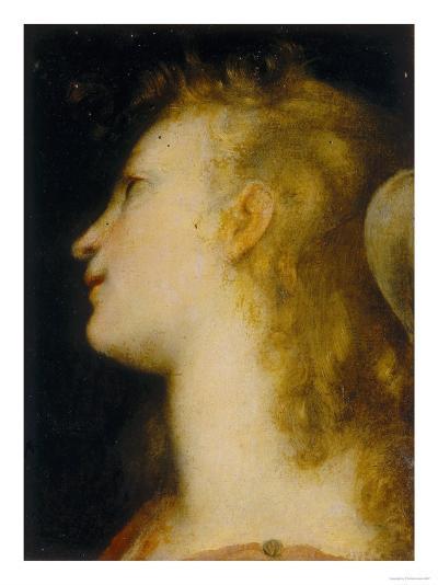Angel's Head, Palatine Gallery, Palazzo Pitti, Florence-Federico Barocci-Giclee Print