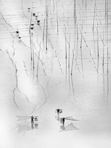 Together by Angela Muliani