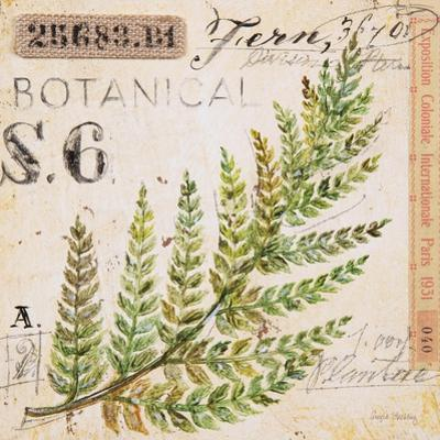 Fern Leaf…Sketchbook by Angela Staehling