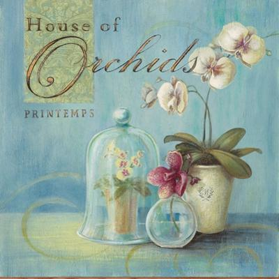 House of Orchids by Angela Staehling