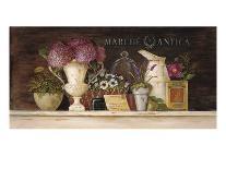 Tuscan Olive Oil-Angela Staehling-Art Print