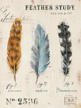 Nature's Feathers by Angela Staehling