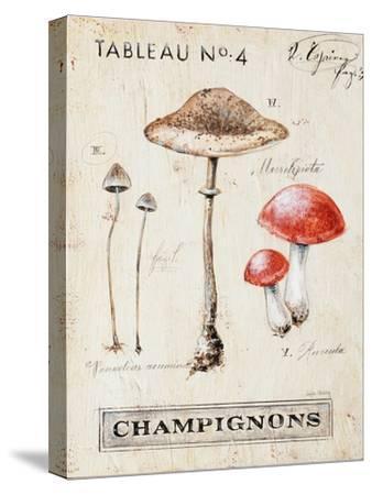 Nature's Mushrooms
