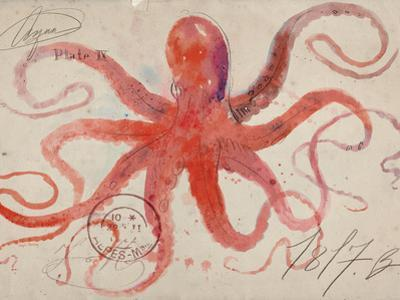 Nautical Octopus - Horizontal