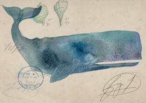 Nautical Whale - Horizontal by Angela Staehling