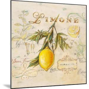 Tuscan Lemon by Angela Staehling