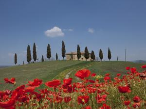 Country Home and Poppies, Near Pienza, Tuscany, Italy, Europe by Angelo Cavalli