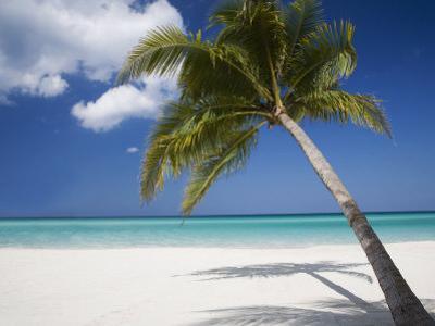 Negril, Jamaica, West Indies, Caribbean, Central America