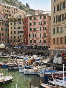 The Village of Camogli, Liguria, Italy, Europe by Angelo Cavalli