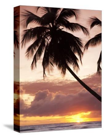 Tropical Sunset, Bridgetown, Barbados, West Indies, Caribbean, Central America