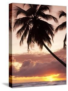 Tropical Sunset, Bridgetown, Barbados, West Indies, Caribbean, Central America by Angelo Cavalli
