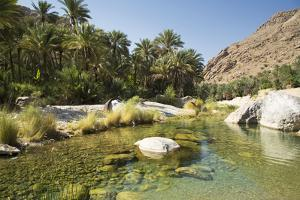 Wadi Bani Khalid, Oman, Middle East by Angelo Cavalli