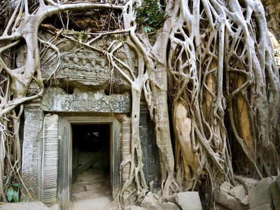 Angkor Thom Temple-Aldo Pavan-Photographic Print