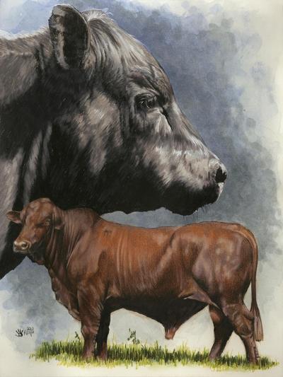 Angus Cattle-Barbara Keith-Giclee Print