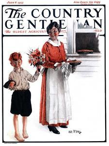 """Flowers for Pie,"" Country Gentleman Cover, June 6, 1925 by Angus MacDonall"