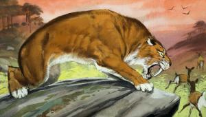 Sabre-Toothed Tiger Out Hunting by Angus Mcbride