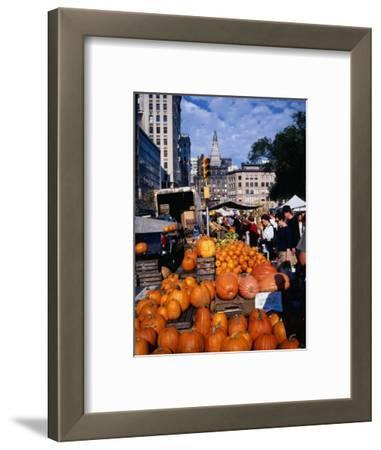 Pumpkins for Sale at Farmers' Market on Union Square, New York City, New York, USA