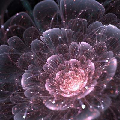 Pink abstract flower with sparkles on black background, fractal illustration