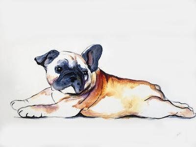 https://imgc.artprintimages.com/img/print/animal-kingdom-iv_u-l-q1gjyy60.jpg?p=0