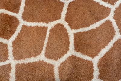 Animal Skin Background of the Patterned Fur Texture on an African Giraffe-David Carillet-Photographic Print